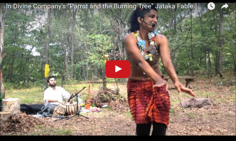 "Performed ""Parrot and The Burning Tree"" from Jataka Fables, Franklin Park Art Grove"